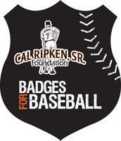 Badges for Baseball