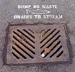 Everett, WA storm drain