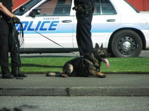 Click to visit the Everett Police Blotter on Facebook.