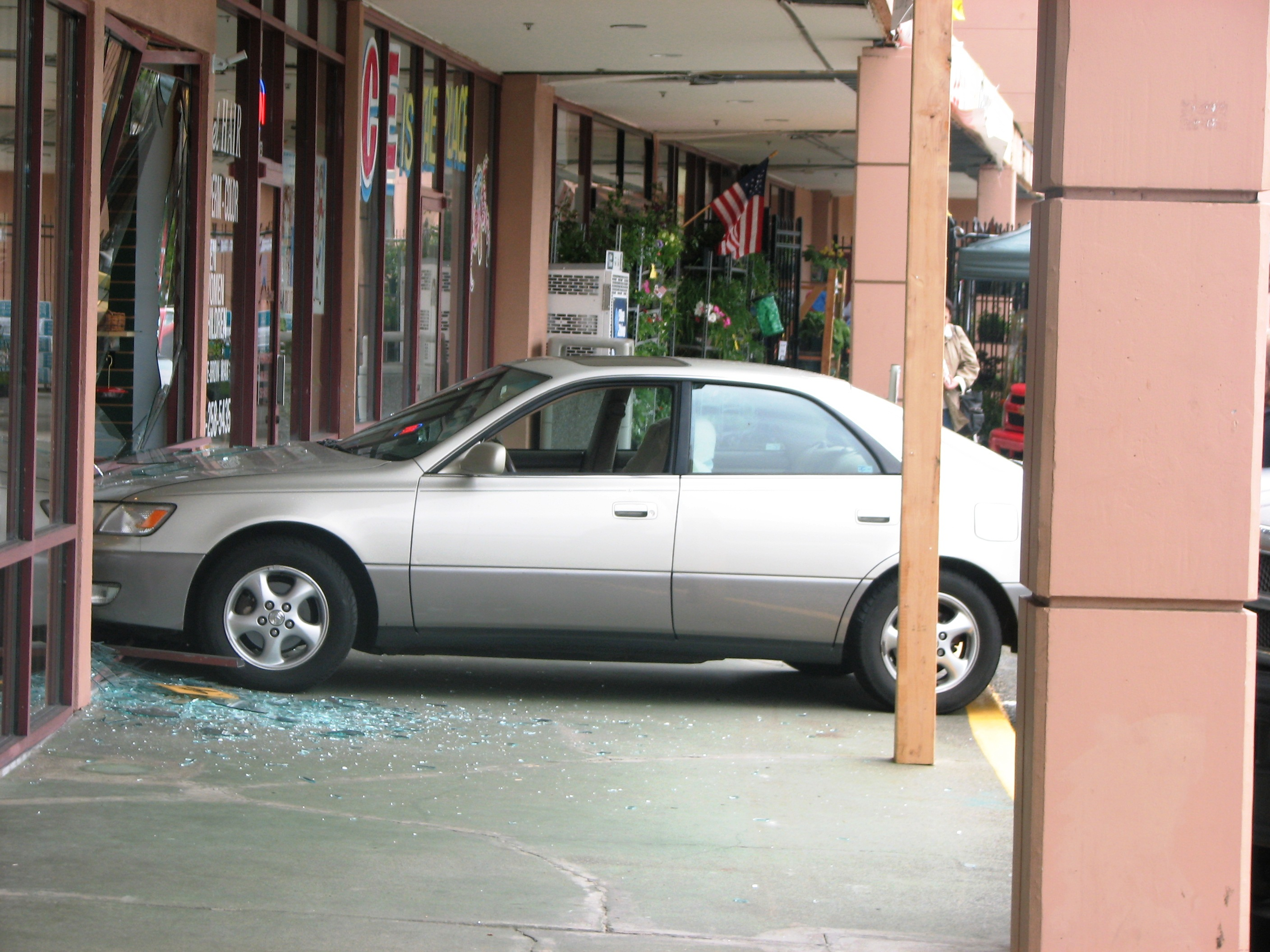 Wild Afternoon as Car Crashes into Wild Birds Unlimited Store in ...