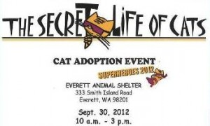 Everett Animal Shelter cat adoption event