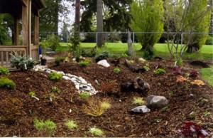 Legion Park rain garden