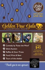 Golden Paws poster
