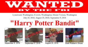 Harry Potter bandit
